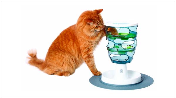 Подарки для котов на день рождения 65