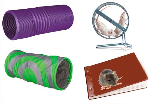 Тоннель пластиковый, тоннель текстильный, колесо, фотоальбом.
