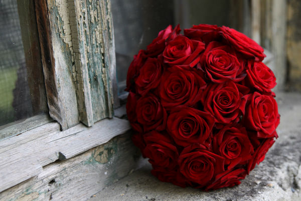 Букет алых роз.