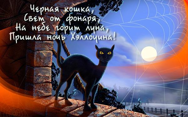 Хэллоуинская открытка с черной кошкой и луной.